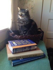 Joe the Cat, Assistant Librettist